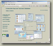 3I Interactive Keys and Taxonomic Databases